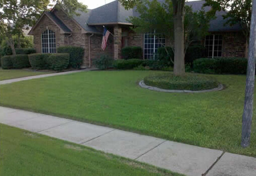 Lawn2-after